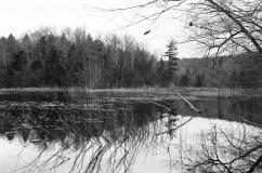 Lost Lake, Minolta X-700, Kodak Tri-X 400