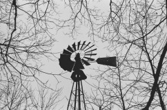 Windmill, Minolta X-700, Kodak Tri-X 400