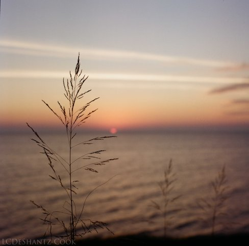 sunset on Lake Michigan, Bronica SQ-A, Lomography 100