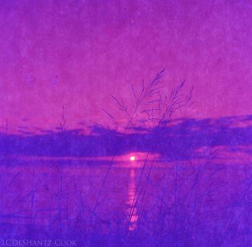 Lake Michigan, Bronica SQ-A, Lomography redscale